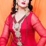 Lingofil Latest party wear winter collection 2012-13 for women (7)