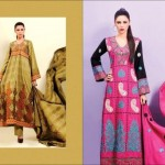 Shaista Winter Dresses 2013 For Women 003