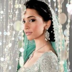 Walima Bridal Dresses Collection 2013 002