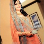 Walima Bridal Dresses Collection 2013 004