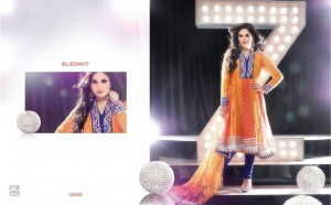 Zarine Khan Party Wear Dress New Collection 2012-13 by The Diva for women (2)