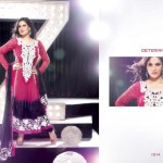 Zarine Khan Party Wear Dress New Collection 2012-13 by The Diva for women (9)