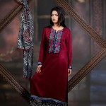 Damak Latest Mid Winter Dresses 2013 For Women 009