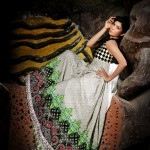 Latest Winter Dress New Collection 2013-2014 By Needle Impressions (1)