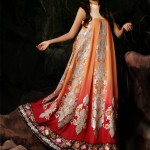 Latest Winter Dress New Collection 2013-2014 By Needle Impressions (3)