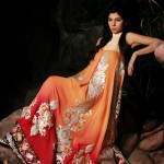 Latest Winter Dress New Collection 2013-2014 By Needle Impressions (4)
