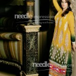 Latest Winter Dress New Collection 2013-2014 By Needle Impressions (8)