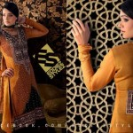 Latest Winter Dresses 2013 By Eddiez Stylez Glamour 007