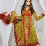 Warda Designer Latest Winter Casual Dresses 2013 For Women 005