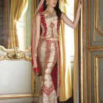 bombay trendz latest collection for women 0014
