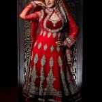 bombay trendz latest collection for women 002