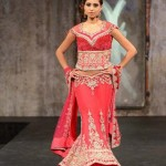 bombay trendz latest collection for women 005