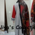 Aliya Naeem latest Party Wear Lawns Stitched Collection 2013 For young girls & stylish Women 004