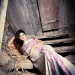 Hamail Latest Party Wear Dress Collection 2013-14 For Women (13)