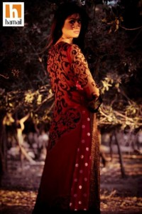 Hamail Latest Party Wear Dress Collection 2013-14 For Women (15)