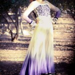 Hamail Latest Party Wear Dress Collection 2013-14 For Women (19)