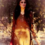 Hamail Latest Party Wear Dress Collection 2013-14 For Women (9)