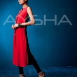 Stylish Outfits Dresses Collection 2013 For girls Women By Aysha Anees 09
