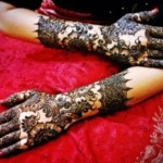 Latest Beautiful Hand Mehndi Designs 2013-2014 For Bridal (2)