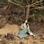 Shariq Textiles Summer Lawn Dresses Collection By Nadia Hussain (16)