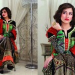Bashir Ahmed Embroidered Lawn Collection 2013 For Women 006