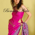 Bombay Wala Stylish Traditional Saree Collection 2013 For Women 06
