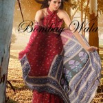 Bombay Wala Stylish Traditional Saree Collection 2013 For Women 09