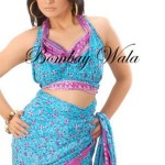 Bombay Wala Stylish Traditional Saree Collection 2013 For Women 10