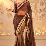 Expensive-Saree-Trends-2013- 13