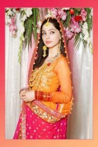 Pakistani Bridal Multi Color Mehndi Outfits