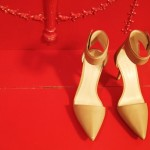 Collection New Shoes Fashionholic 2013 for Ladies