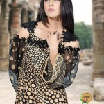 Aalishan Chiffon Lawn 2013 by Dawood Textile For Women 004