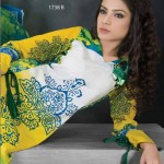 Dawood Hajiba De Chiffon Collection 2013 For Women 004