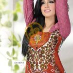 Dawood Hajiba De Chiffon Lawn Collection 2013 Vol 2 For Women 001