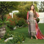 Deeba Collection By Shariq Textiles 2013 For Women 006