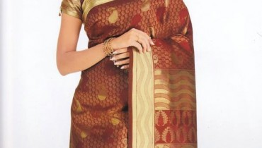 Exclusive Saree Collection 2013 For Girls By Rupali 001