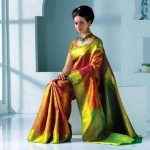 Exclusive Saree Collection 2013 For Girls By Rupali 002