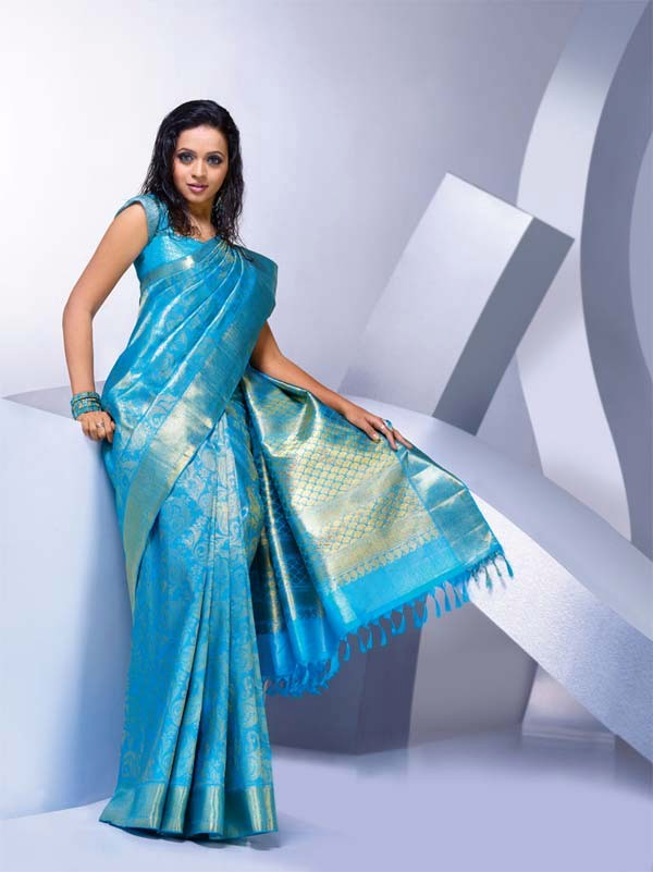 Exclusive Saree Collection 2013 For Girls By Rupali 003