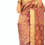 Exclusive Saree Collection 2013 For Girls By Rupali 004