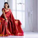 Exclusive Saree Collection 2013 For Girls By Rupali 005