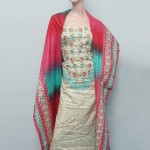 Libas Printed Collection 2013 by Shariq Textiles Vol 3 For Women 003