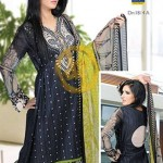 Dawood Hajiba De Chiffon Vol 2 Collection 2013 For Women 004