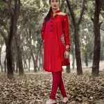 Latest Eid Dress Collection Casual Wear 2013 By Pankheri (3)
