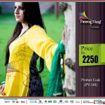 Latest Eid Dresses Collection 2013 For Ladies By Patang Vargi (9)