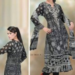 Dawood Hajiba De Chiffon Vol 3 For Women Collection 2013 004