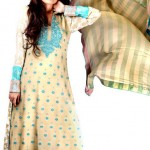 Silk Asia Fancy Dresses Collection 2013 For Women 001