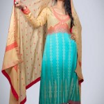 Silk Asia Fancy Dresses Collection 2013 For Women 002