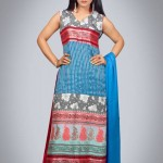 Silk Asia Fancy Dresses Collection 2013 For Women 003