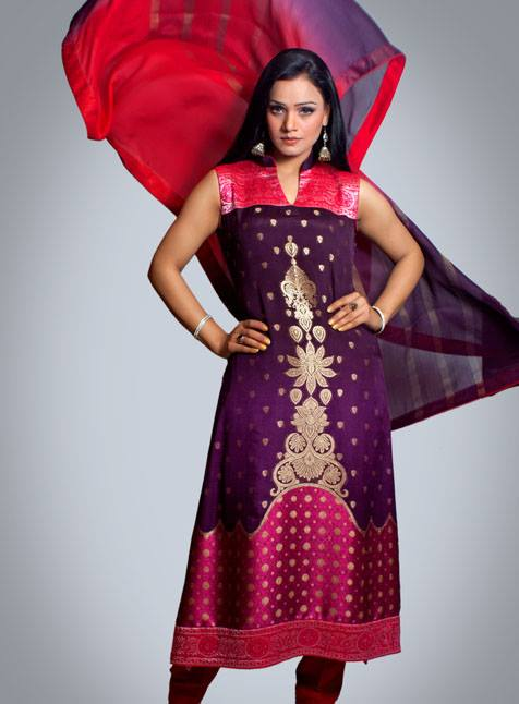 Silk Asia Fancy Dresses Collection 2013 For Women 004