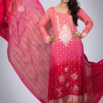 Silk Asia Fancy New Dresses Collection 2013 00